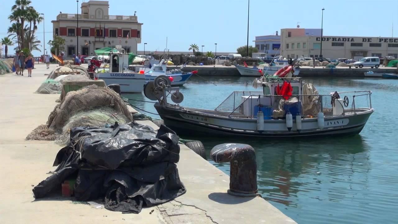 Vista Puerto Cofradía de Pescadores de Santa Pola